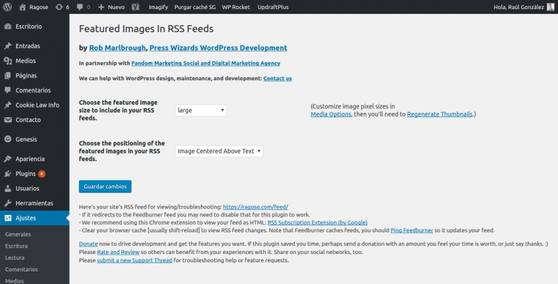 Captura de pantalla del feed rss en wordpress