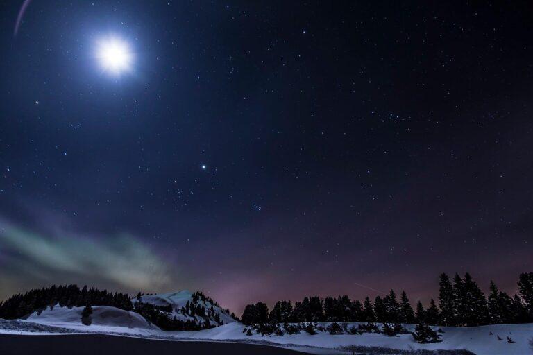 La estrella sobre el bosque. STEFAN ZWEIG